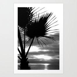 Tropical Darkroom #254 Art Print