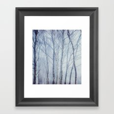 Mist In The Trees Framed Art Print