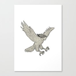 Harpy Swooping Drawing Canvas Print