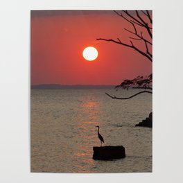 Sunset with Heron Poster