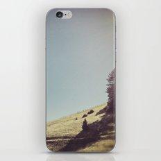 hillside iPhone & iPod Skin