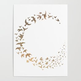 Starbirds Poster