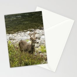 Handsome Deer on an Island No. 1 Stationery Cards