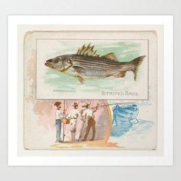 Vintage Striped Bass Illustration (1889) Art Print