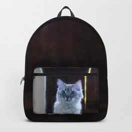 What about second breakfast? Backpack