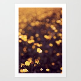 {buttercup blue} Art Print