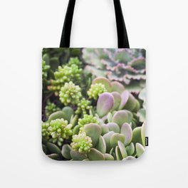 Blushing Succulents Tote Bag