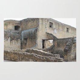 Herculaneum. Rug