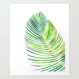 Watercolor palm leaf Art Print