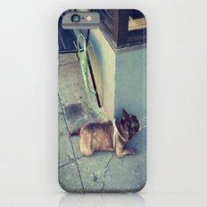 Dog Days Of Summer iPhone 6s Slim Case