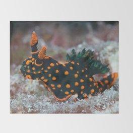 Orange-spotted Nembrotha Monster Nudibranch Throw Blanket
