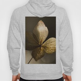 Autumn Scene - Dry Petals with Golden Sunset Light #decor #society6 #buyart Hoody