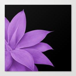 Agave Finesse #10 - Purple on Black #tropical #decor #art #society6 Canvas Print
