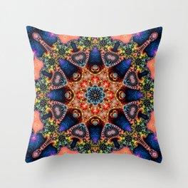 BBQSHOES: Kaleidoscopic Fractal Digital Art Design 1702K Throw Pillow