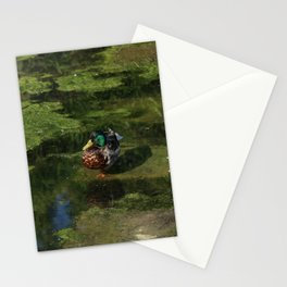 Duck's portrait Stationery Cards