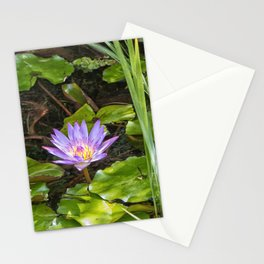 Exquisite water lily Stationery Cards
