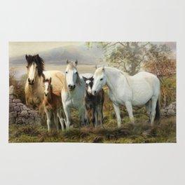 Connemara Ponies Rug