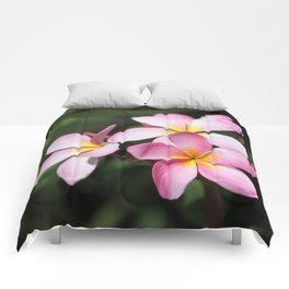 Hawaiian Flower Comforters