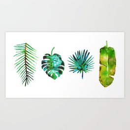 Four Tropical Leaves Art Print