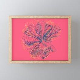 Siamese Fighting Fish - Intricate Line Drawing Framed Mini Art Print