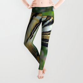 Swallowtail With Partially Closed Wings Side View Leggings