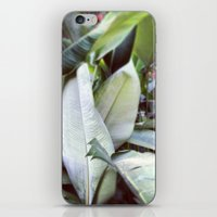 jungle iPhone & iPod Skins featuring Jungle by Gabriela Fuente