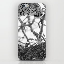 Queen In The Trees iPhone Skin