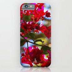 Bougainvillea I iPhone 6s Slim Case