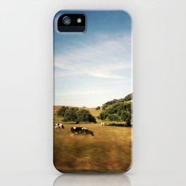 Sonoma cows iPhone Case