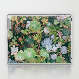 suucu garden Laptop & iPad Skin