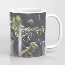 Nettles Coffee Mug