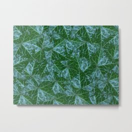 Myrtle Ming English Ivy Metal Print