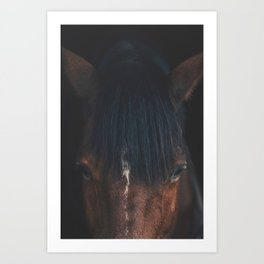 Horse - Cheyenne Art Print