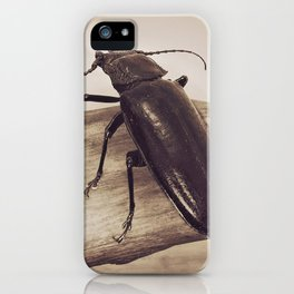 Viewpoints iPhone Case