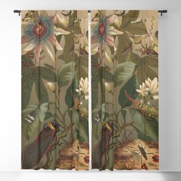 Antique Cicada Lithograph Blackout Curtain