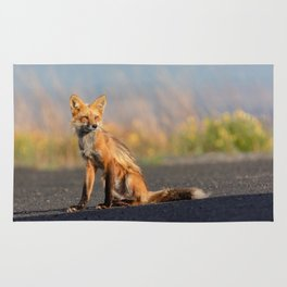 Bella the Red Fox Rug