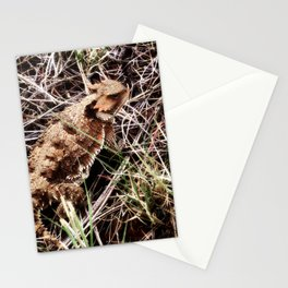 Greater Short Horned Lizard Stationery Cards