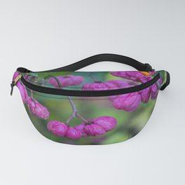 Spindle Tree Berries 2 Fanny Pack