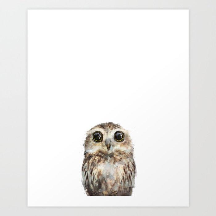 Little Owl Kunstdrucke
