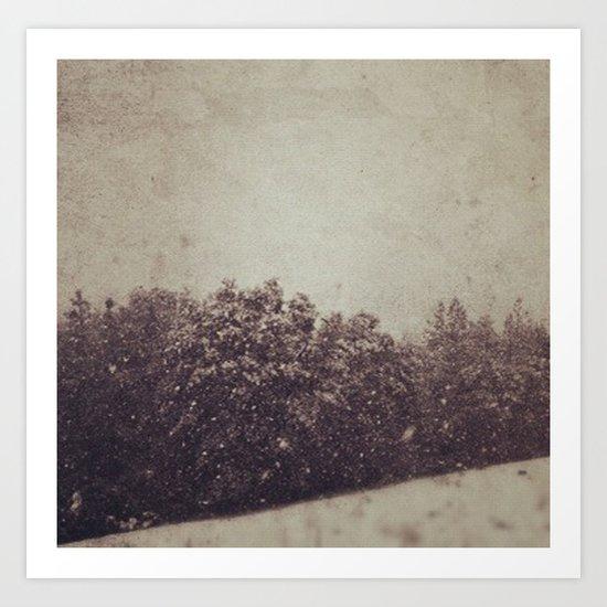 Winter Drift Art Print
