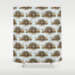 echidna digging Shower Curtain