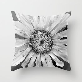 in beauty i walk... Throw Pillow