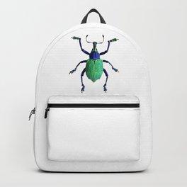 Eupholus Weevil Beetle Backpack