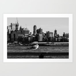 A seagull stand on fence with background of Brooklyn Heights from east river side Art Print