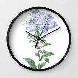 HIGHEST QUALITY botanical poster of Plumbago Wall Clock