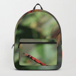 Red Skimmer or Firecracker Dragonfly Backpack