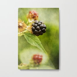 Wild berries #9 Metal Print