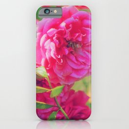 Summer scent iPhone Case