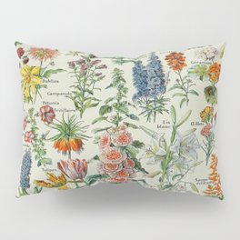 Flowers Vintage Scientific Illustration French Language Encyclopedia Lithographs Educational Pillow Sham