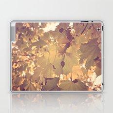 Fader Laptop & iPad Skin